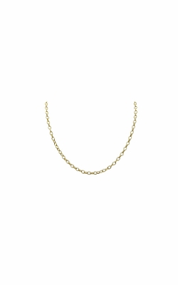 Albert's 14k Yellow Gold 2.5mm Oval Textured Link Chain product image