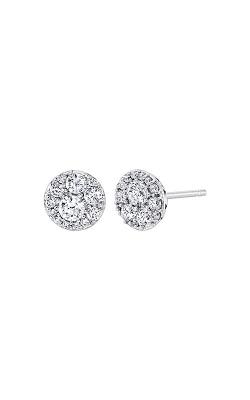Albert's 10k White Gold 1/4ctw Diamond Stud Earrings 2229800250W-01 product image