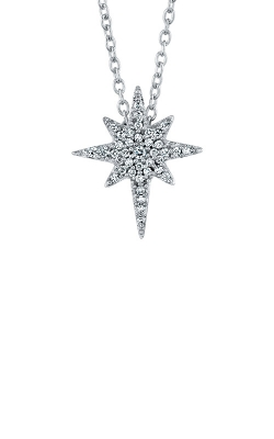 Albert's 10k White Gold Diamond Star Pendant 2454080120W product image