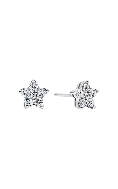 Albert's Earrings ER10136-SSSC product image