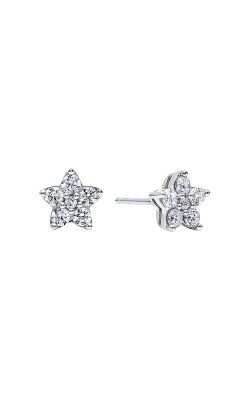 Albert's Earrings ER10136-SSSC product image