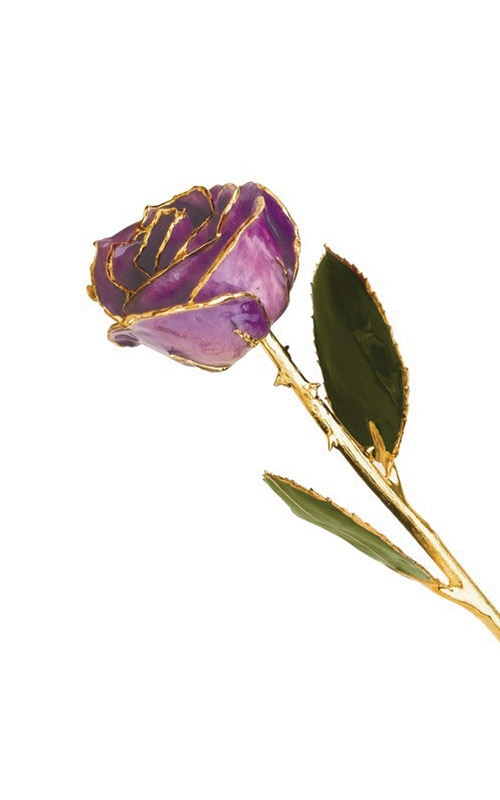 Albert's Gold Dipped Lilac Rose GP9338 product image