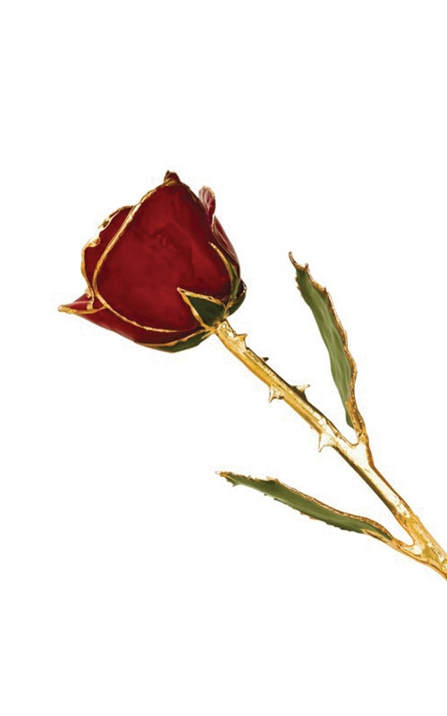 Albert's Gold Dipped Red Rose GP9341 product image