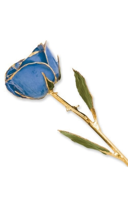 Albert's Gold Dipped Blue Rose GP9349 product image