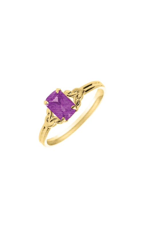 Albert's 14k Yellow Gold Amethyst Child Ring R572AME product image