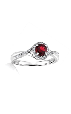 Albert's Sterling Silver Diamond Garnet Fashion Ring R6417-GAR-SS product image