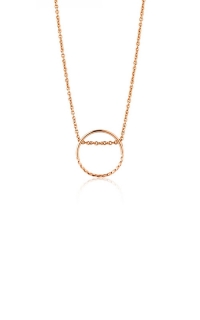 Ania Haie Twist Chain Circle Necklace N007-03R product image