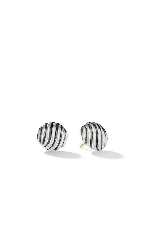 Sculpted Cable Earrings product image