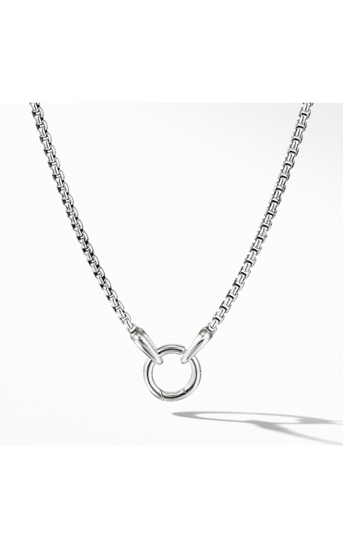 Charm Necklace product image