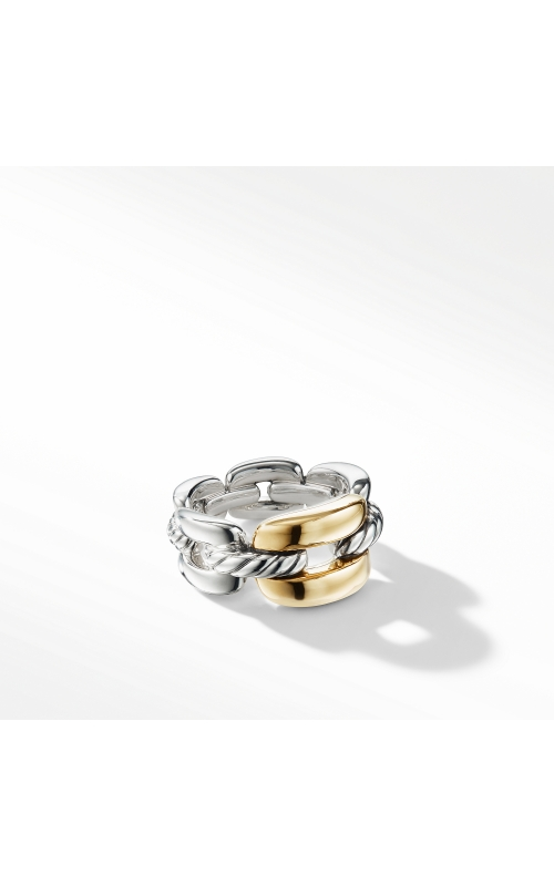 Wellesley Link Medium Chain Link Ring with 18K Gold product image