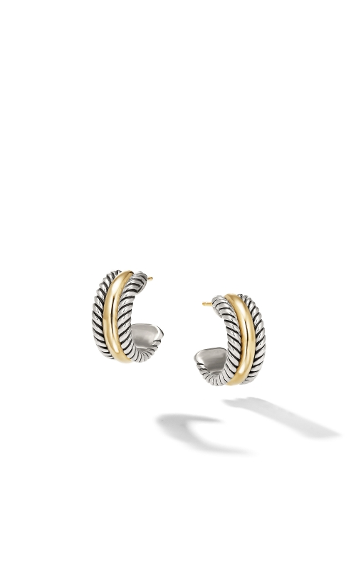 Hoop Earrings with Gold product image
